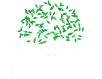 Parkhill Tree & Land Management LLC Logo